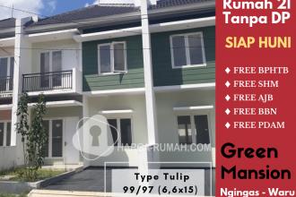 Green Mansion Tropodo Promo Tulip